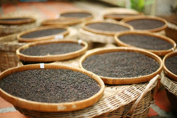 岩倉市 クラタペッパー 黒コショウ 無農薬 完熟胡椒 カンボジア 輸入